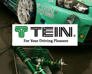 TEIN PERFORMANCE SPRING KITS